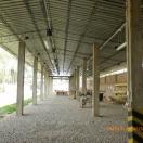 Nuevas oficinas de Bisa8