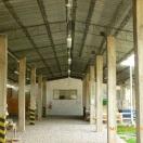 Nuevas oficinas de Bisa7